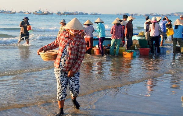 The early morning fish market in Mui Ne Habor