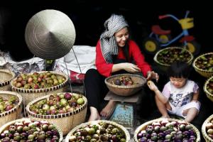 Lai Thieu Orchard