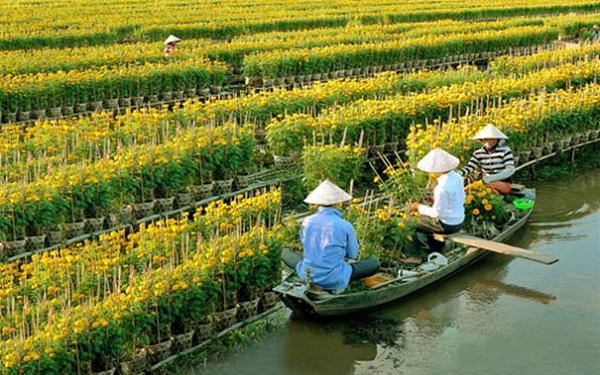 Mekong Delta tour – Cai Mon Orchard, Ben Tre