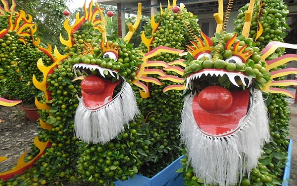 Unique bonsais shaped as dragons in Cai Mon