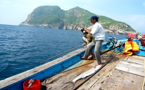 Shark fishing in Con Dao Island - an interesting experience