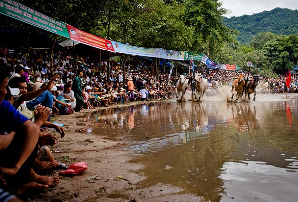 The festival attracts a lot of people coming to attend