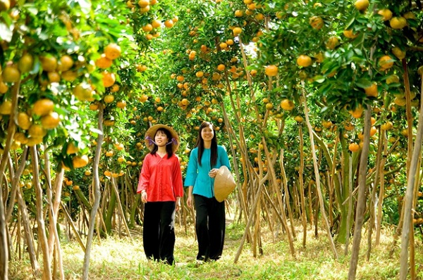 Welcoming fertile orchards of Mekong Delta