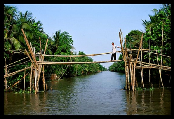 """Cau khi"" (Monkey bridge)"