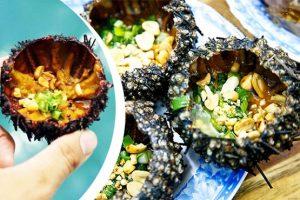 The porridge urchin