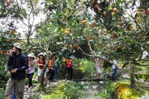 My Khanh Garden tour