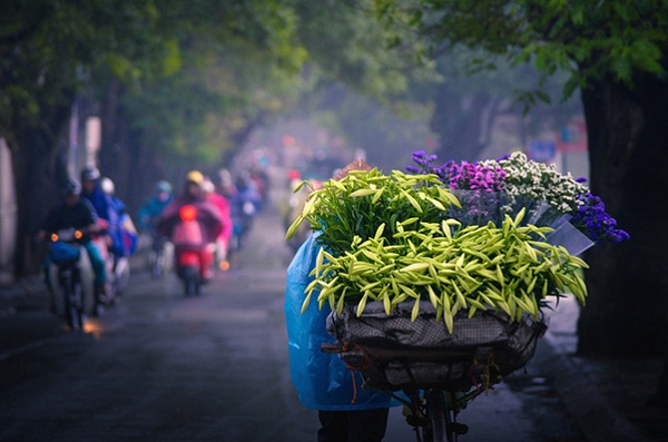 Two-Wheeled Vendors in Vietnam