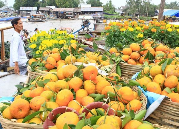 Fruits which you can see when exploring Mekong delta by boat are being sold