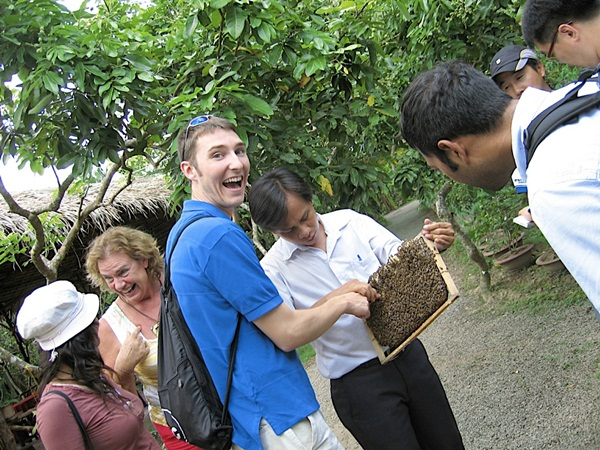 Honeybee keeping in Ben Tre