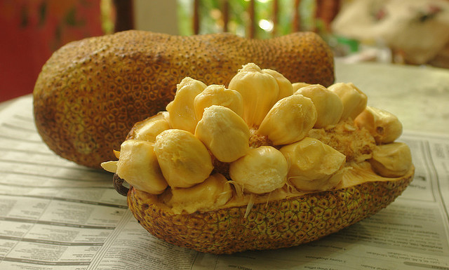 To nu jackfruit