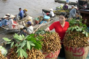 The fruits of Cai Be floating market are very fresh and delicious