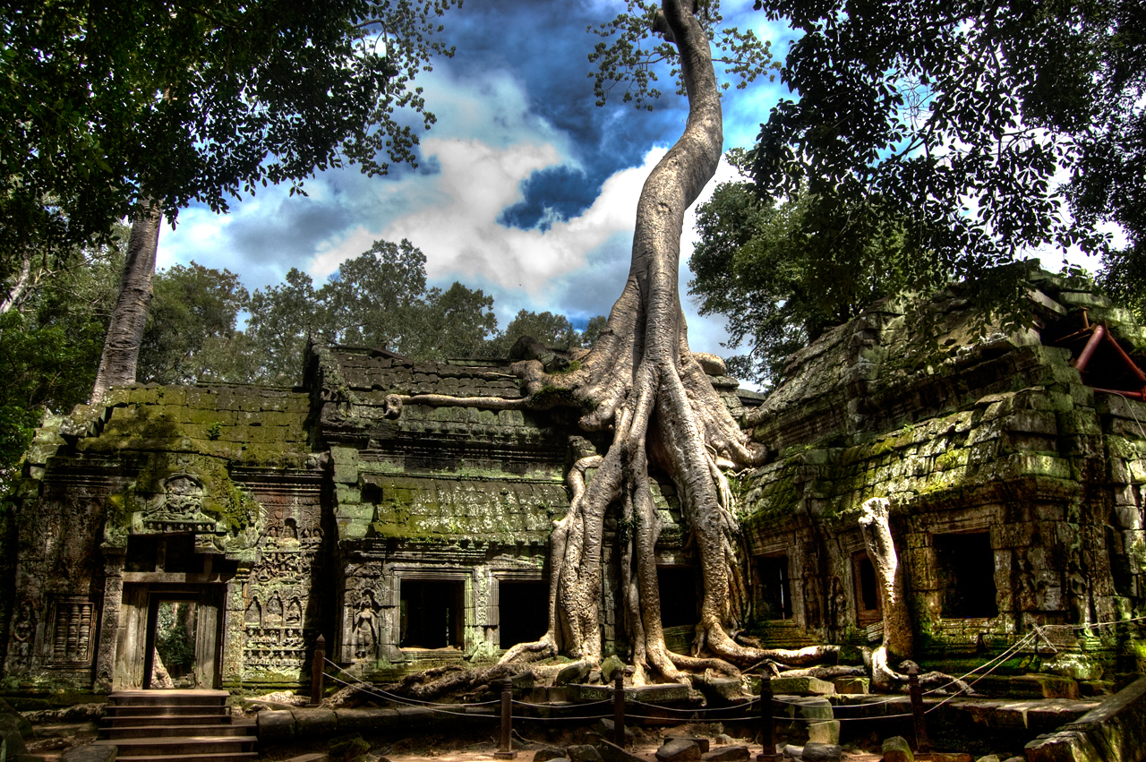 Ta Prohm with gigantic roots