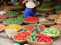 Common markets in Hanoi
