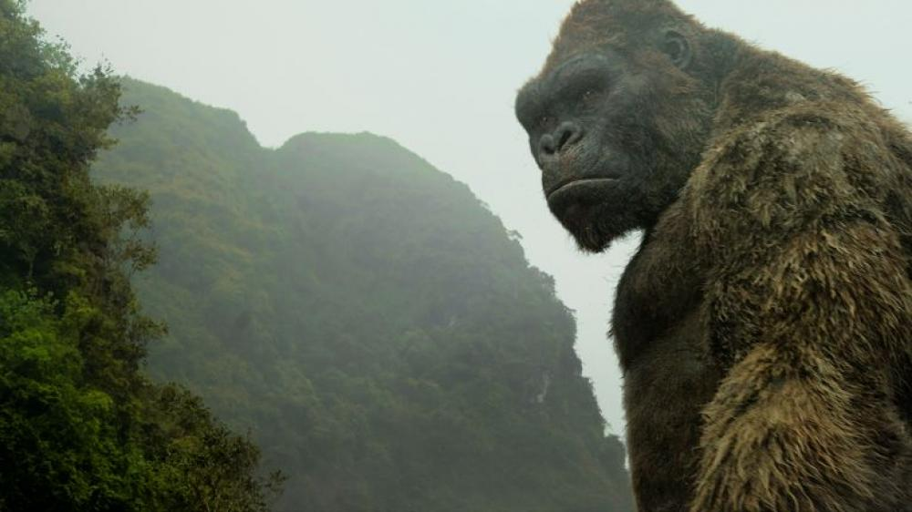 Vietnam - the perfect location for Kong