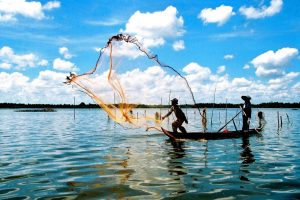 Fishing in hot weather of Mekong Delta Vietnam