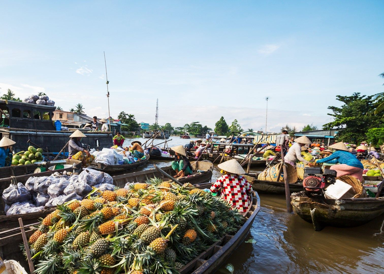 Various tropical fruits in floating market Mekong Delta