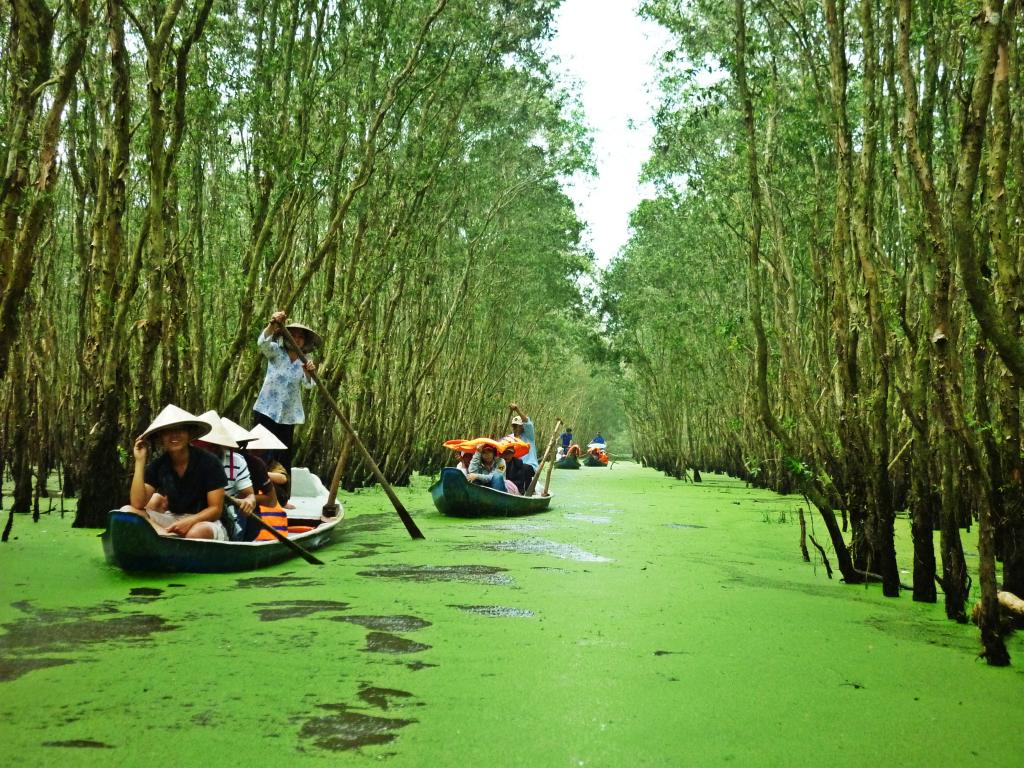 Travelers are going boating on the river in Mekong Delta