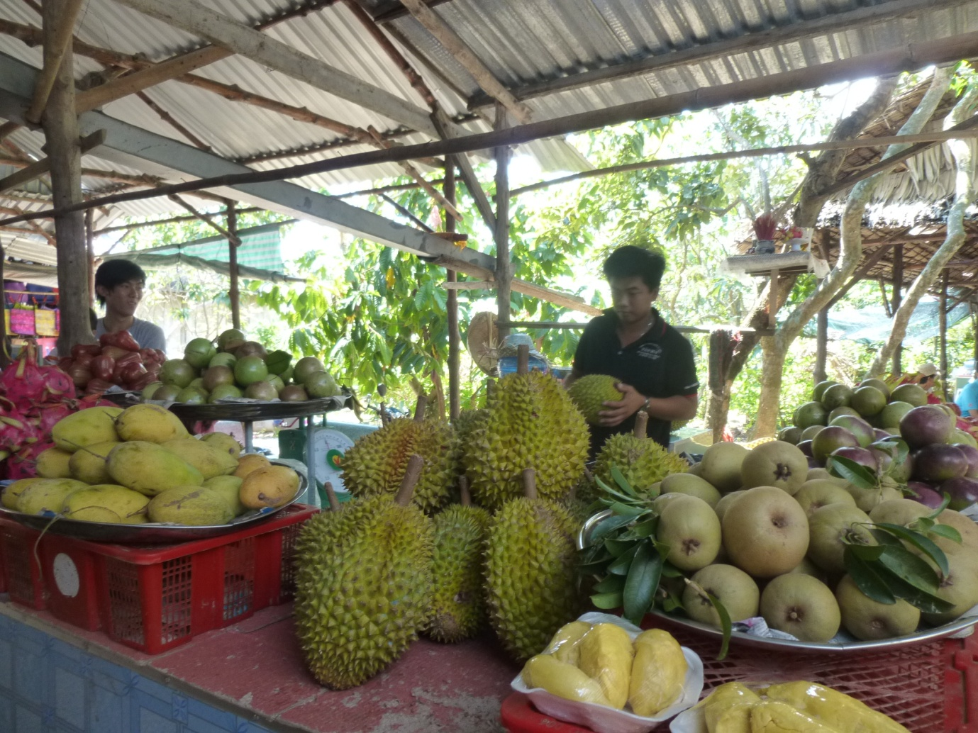 Tropical fruit in the Mekong Delta