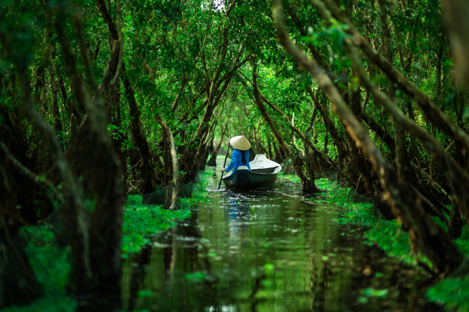 The dinghy leads tourists through narrow waterway on Mekong Delta