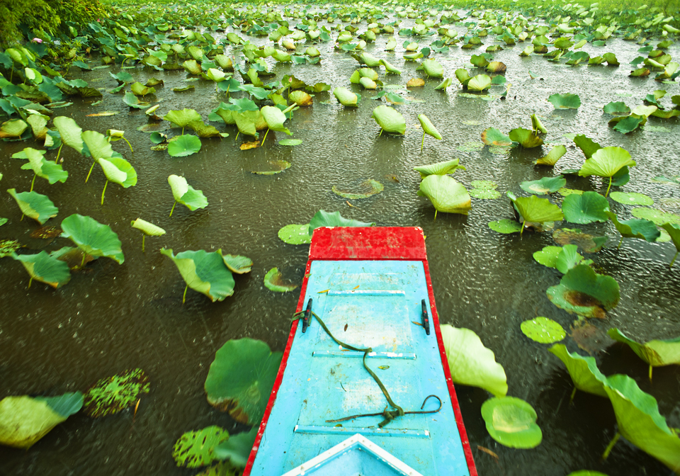 Authentic Mekong Delta Tour 4 Days