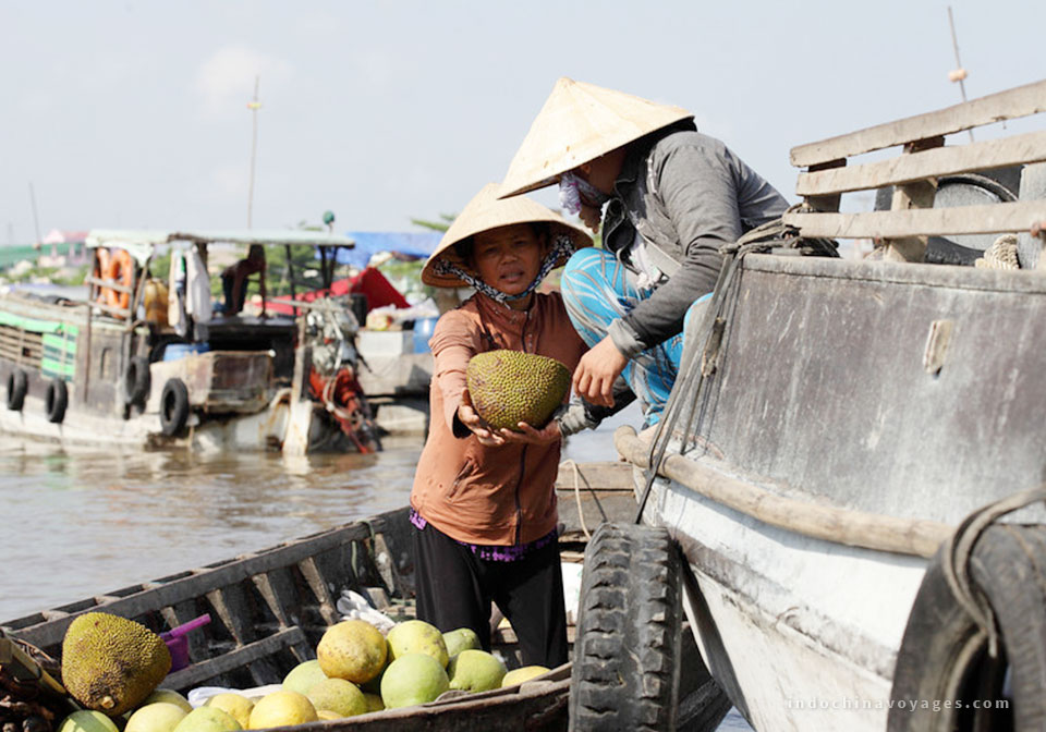 Tips To Make A Perfect Mekong River Tour In Vietnam
