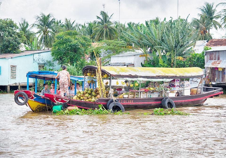 Mekong_delta_tour_Vietnam
