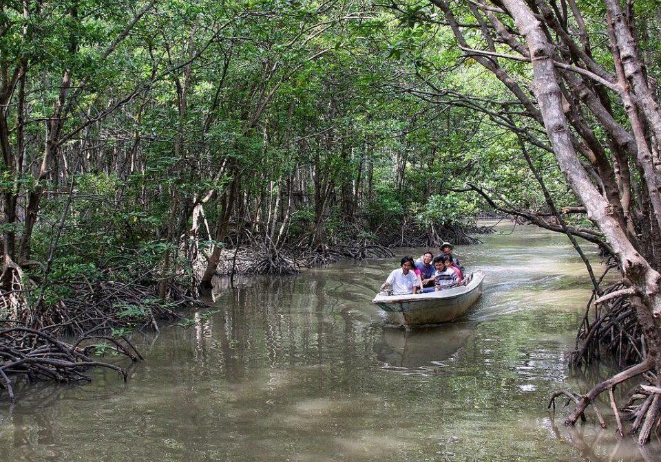 mangrove Can Gio Vietnam